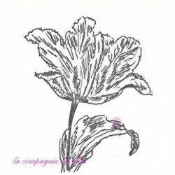 tampon tulipe non monté