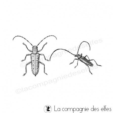 Sellos y tintas scrapbooking |insects rubber stamp