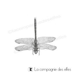 dargonfly stamp | timbre libellule