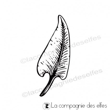 Sketch carte/page d'août de Béa Tampon-feuille-asplenium