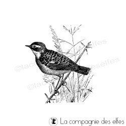Tampon oiseau traquet