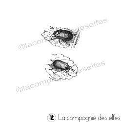 Tampon scarabées sur feuilles