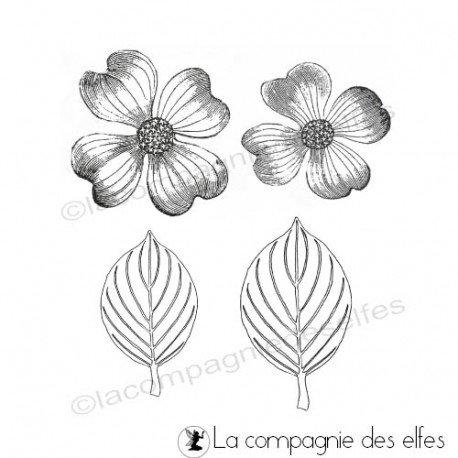 Carte cactus ou exotique 2/3 Tampons-fleur-et-feuilles-cornouiller-non-montes
