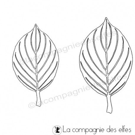 carte adolescents 1/3 Feuilles-cornouiller-tampon-nm