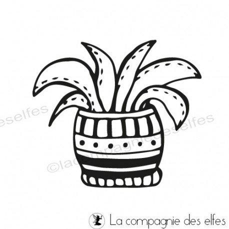 Carte 2/3 Tampon-cactus-aloes