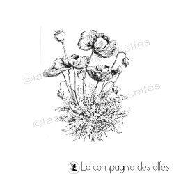 bouquet de coquelicots - tampon nm