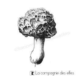 champignon morille tampon nm