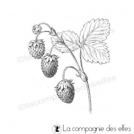 Tampon encreur fraises | tampon encreur fraisier