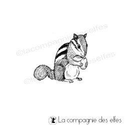 petit écureuil - tampon non monté