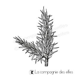 Achat tampon branche sapin