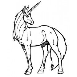 tampon licorne unicorn rubber stamp
