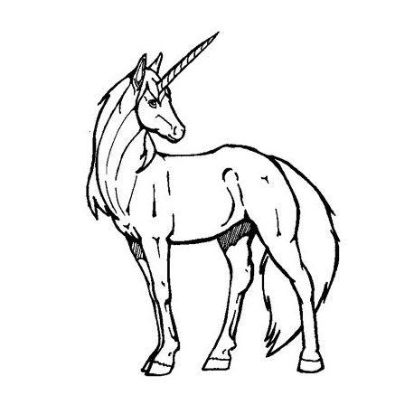 unicorn stamp | tampon licorne