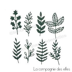 Achat plaque gaufrage herbe | dies feuille