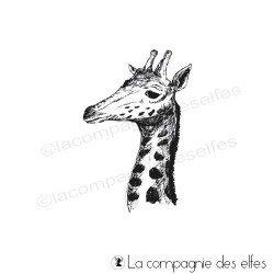 tampon superbe tête de girafe nm