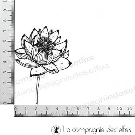 Carte 2/3 Tampon-lotus-eclos