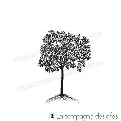 OLIVIER arbre tampon nm