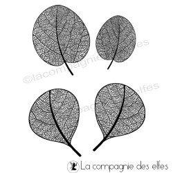 Cachet feuilles eucalyptus