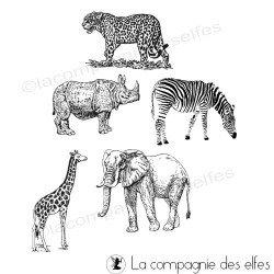 Tampon zoo | tampon encreur zoo | acheter tampon animaux