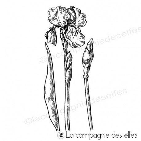 Timbre impression tissu | acheter cachet iris