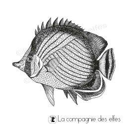 Tampon poisson tropical