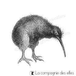Timbre encreur oiseau | kiwi rubberstamp