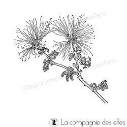 Tampon calliandra
