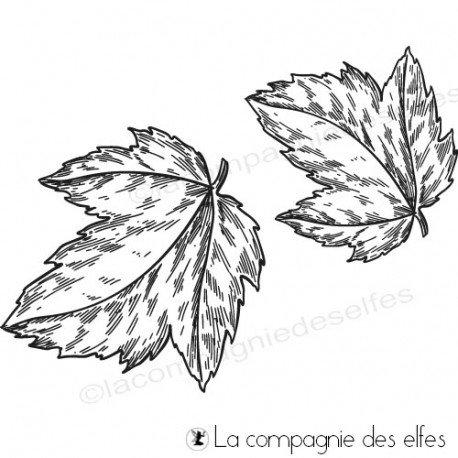 carte automne autour des feuilles feuillages 1/3 Tampon-feuilles-automne
