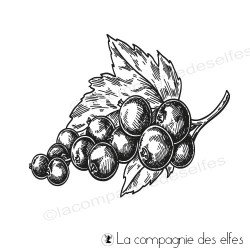 Tampon grappe raisin