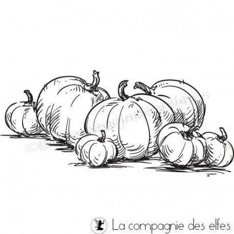 étampe citrouilles | achat cachet potiron | pumpkins stamp