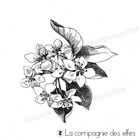 étampe fleur de fruit | achat cachet poire| perry flower stamp