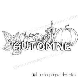 Tampon automne et ses fruits