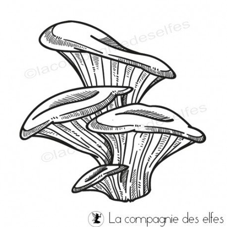 automne et étiquettes 1/3 Tampon-champignons-d-automne