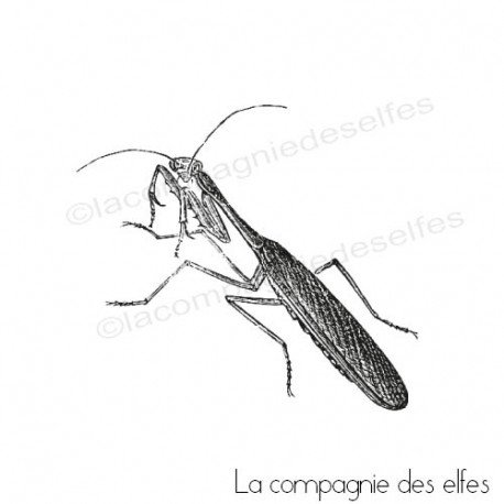 Timbre encreur insecte | insect rubberstamp