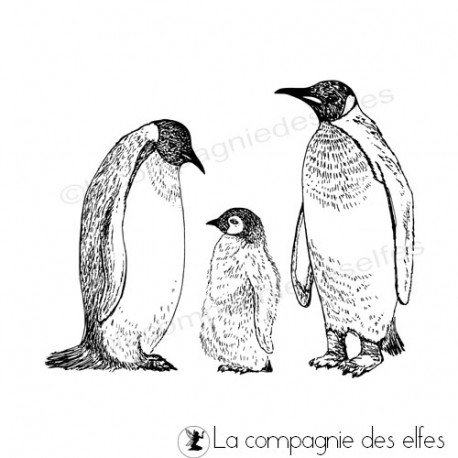 Tampon famille pingouin | penguin rubber stamp