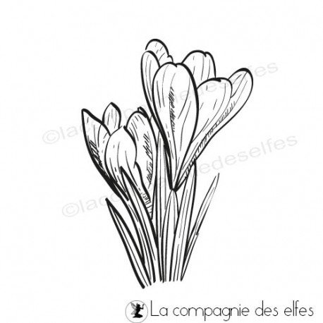Cartes libellule 3/3 Tampon-encreur-crocus