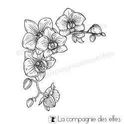 étampe orchidee | orchid stamp scrapbooking