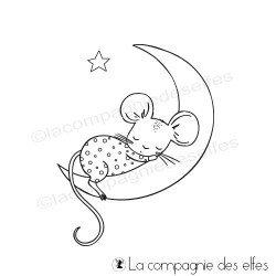 Tampon souris sur la lune