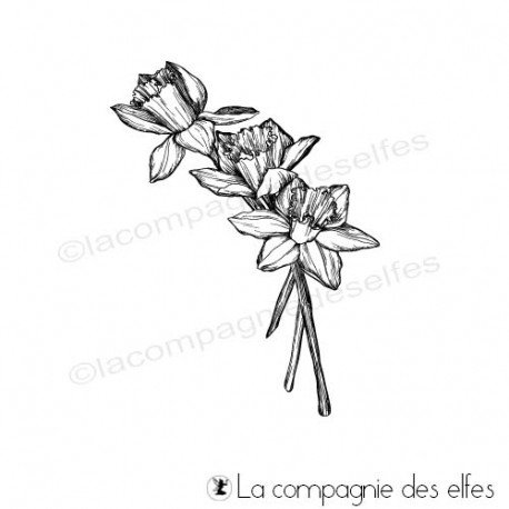 Tampon encreur jonquille | daffodil rubber stamp