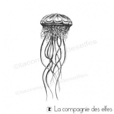 Timbre encreur méduse | jellyfish rubberstamp