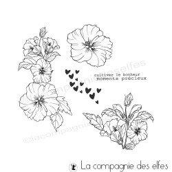 Kit tampon hibiscus