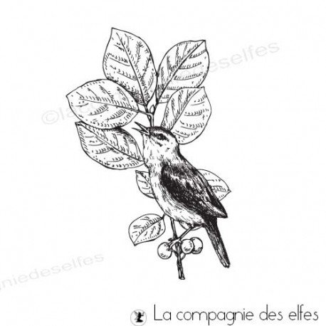 Achat tampon branche oiseau scrapbooking