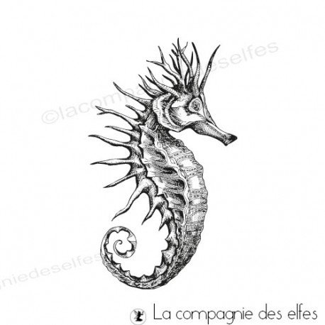 seahorse rubber stamp | achat tampon hippocampe