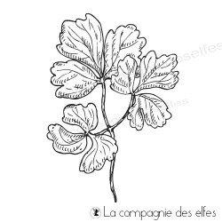 Tampon trio feuilles végétales