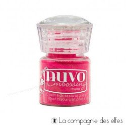 Nuvo embossing powder | achat poudre strawberry slush