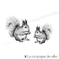 Tampon encreur écureuils