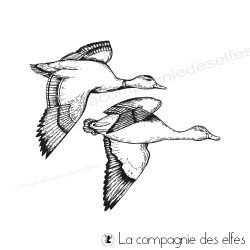 Achat tampon canards sauvages