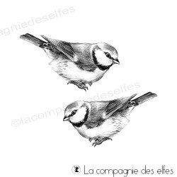 Tampon les petis oiseaux