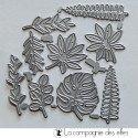 Dies petites feuilles exotiques