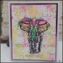 Carte éléphant moments précieux