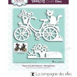 Achat dies chat sur un vélo